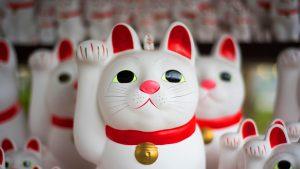 Winke winke Katzen