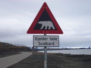 Schild: Warnung Eisbär
