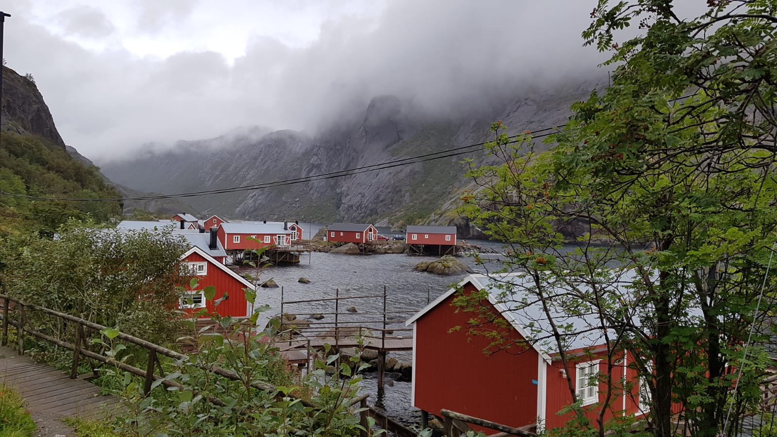 Skandinavistik Studieren