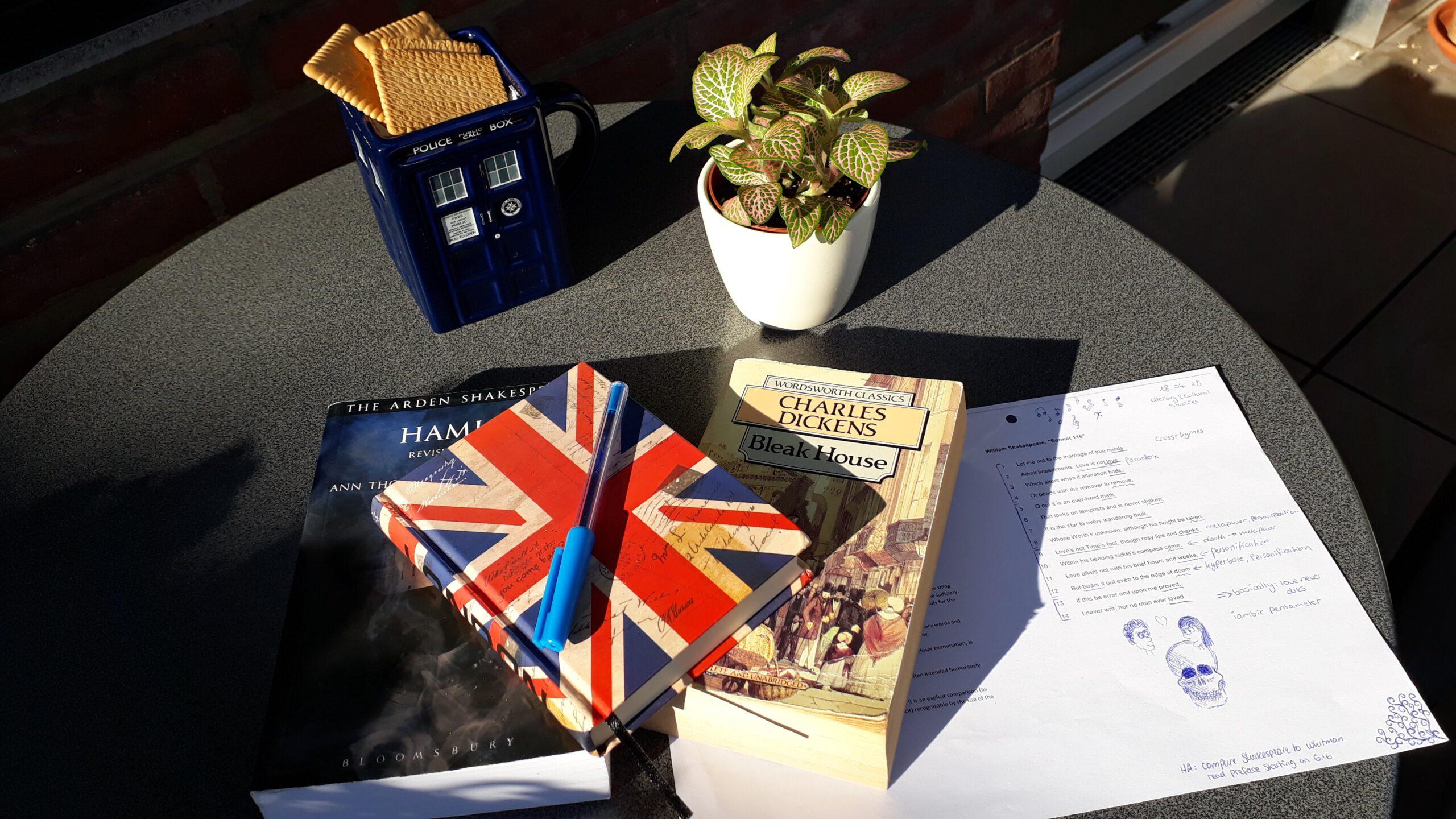 Studium In Englisch
