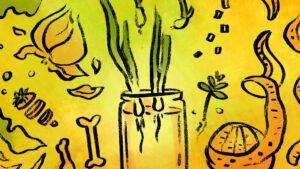 Illustrationen von Lebensmitteln auf einem gelben Hintergrund. Man erkennt Möhrenscheiben, ein Glas mit keimenden Zwiebeln, Knoblauchknollen, Konochen, Kräuter, Orangenschale